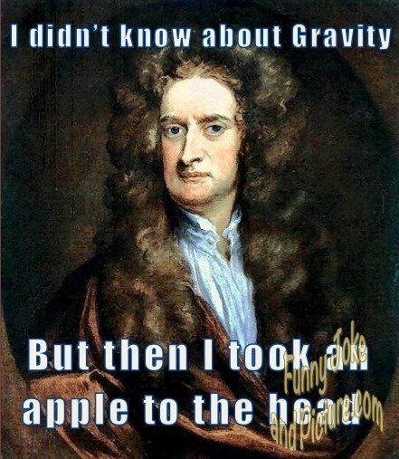 Apples, trees, and Newton's laws